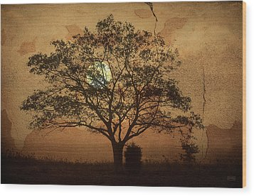 Landscape On Adobe Wall Wood Print by Dave Gordon