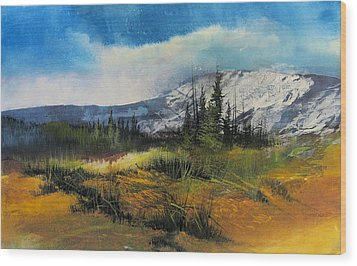 Landscape Wood Print by Robert Carver