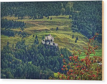 Wood Print featuring the photograph Landscape With Castle by Hanny Heim