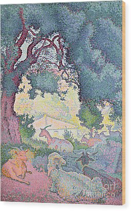 Landscape With Goats Wood Print by Henri-Edmond Cross