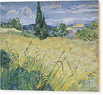 Landscape With Green Corn Wood Print by Vincent Van Gogh