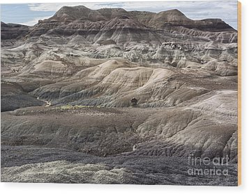 Wood Print featuring the photograph Landscape With Many Colors by Melany Sarafis
