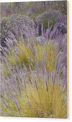 Landscape With Purple Grasses Wood Print by Ben and Raisa Gertsberg