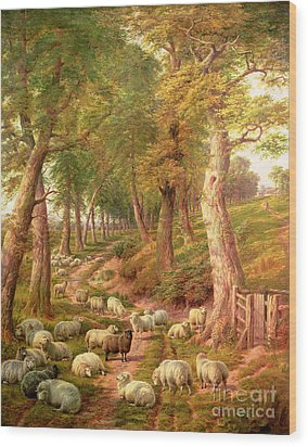 Landscape With Sheep Wood Print by Charles Joseph