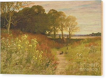 Landscape With Wild Flowers And Rabbits Wood Print by Robert Collinson