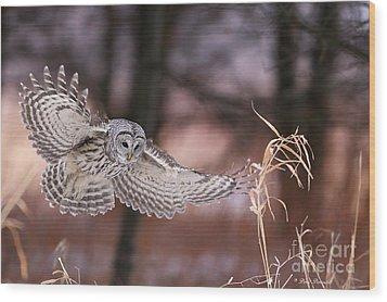 L'ange De La Mort Wood Print by Denis Dumoulin