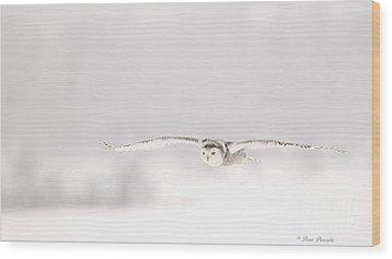 L'ange Des Cieux Wood Print