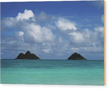 Wood Print featuring the photograph Lanikai by Art Shimamura