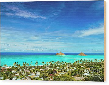 Wood Print featuring the photograph Lanikai Beach From The Pillbox Trail by Aloha Art