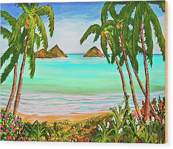 Lanikai Beach Oahu Hawaii #358 Wood Print by Donald k Hall