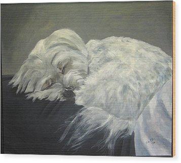 Lap Dog Wood Print by Elizabeth Ellis