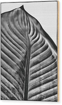 Large Leaf Wood Print