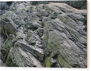 Large Rock At Central Park Wood Print