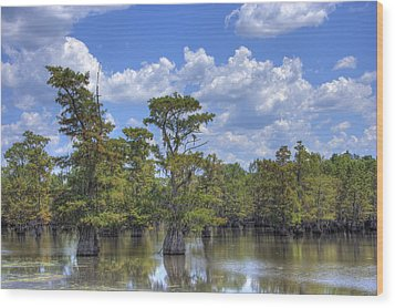 Largemouth Country Wood Print by Barry Jones