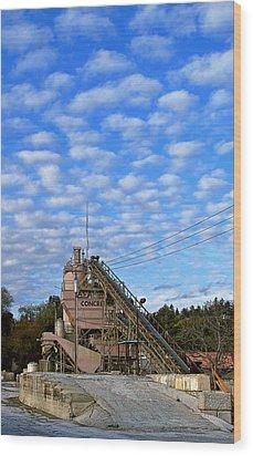 Las Animas Wood Print by Larry Darnell