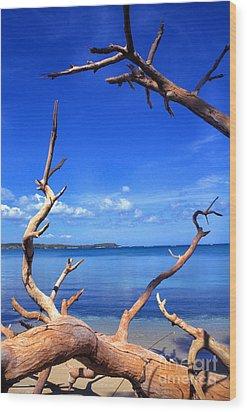 Las Cabezas Bay Wood Print by Thomas R Fletcher