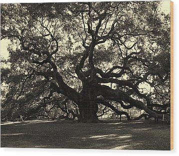 Last Angel Oak 72 Wood Print