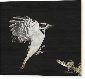 Last Call Wood Print by Gerry Sibell