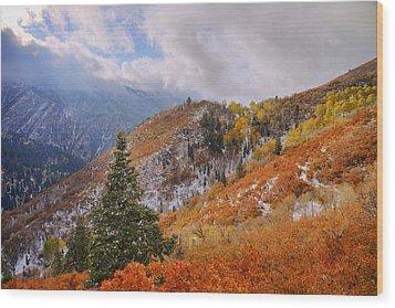 Last Fall Wood Print by Chad Dutson