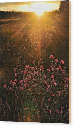 Wood Print featuring the photograph Last Glimpse Of Light by Jan Amiss Photography