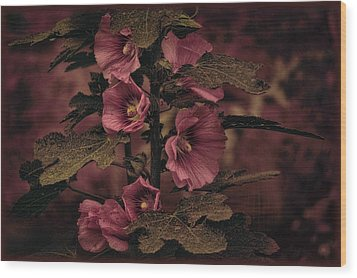 Wood Print featuring the photograph Last Hollyhock Blooms by Douglas MooreZart