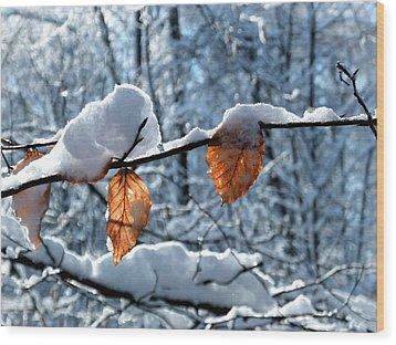 Last Leaves Wood Print by Karen Stahlros