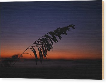 last light at Hilton Head Island Wood Print
