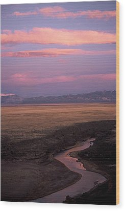 Last Light Wood Print by Lynard Stroud