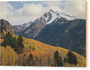 Wood Print featuring the photograph Last Light Of Autumn by David Chandler
