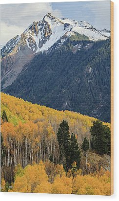 Wood Print featuring the photograph Last Light Of Autumn Vertical by David Chandler