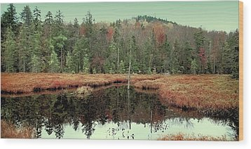 Wood Print featuring the photograph Last Of Autumn On Fly Pond by David Patterson