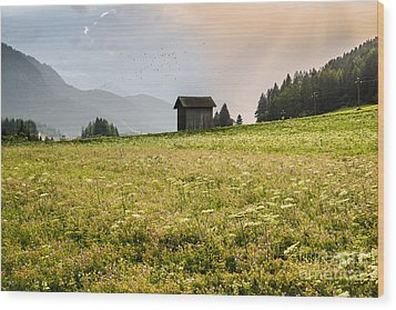 Wood Print featuring the photograph Last Rays On The Valley by Yuri Santin