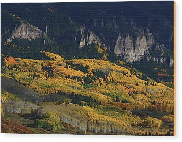 Wood Print featuring the photograph Late Afternoon Light On Aspen Groves At Silver Jack Colorado by Jetson Nguyen
