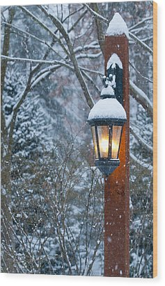 Late Afternoon Snow Wood Print by Sandra Bronstein