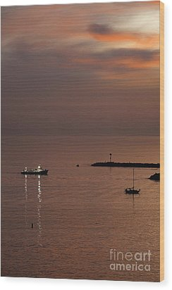 Wood Print featuring the photograph Late Evening by Viktor Savchenko