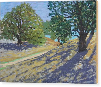 Wood Print featuring the painting Late Light's Shadows by Gary Coleman