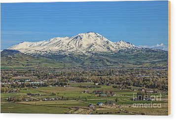 Wood Print featuring the photograph Late Spring On Squaw Butte by Robert Bales
