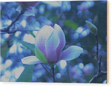Late Summer Bloom Wood Print by John Glass