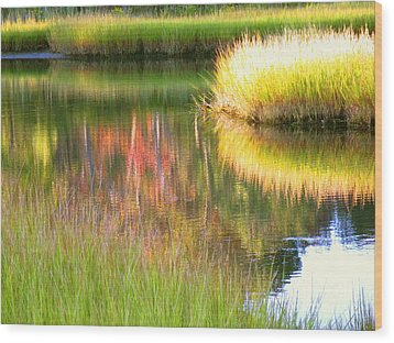 Late Summer Marsh Calm Wood Print