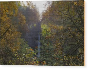 Latourell Falls In Autumn Wood Print by David Gn