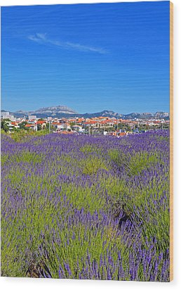 Lavendar Of Provence Wood Print