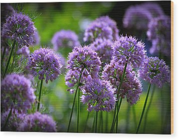 Lavender Breeze Wood Print by Linda Mishler