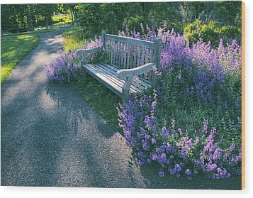 Wood Print featuring the photograph Lavender Delight by Jessica Jenney