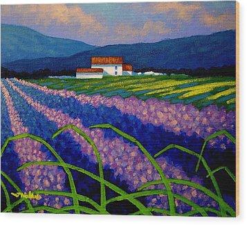 Lavender Field France Wood Print by John  Nolan