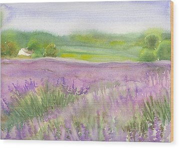 Lavender Field In Italy Wood Print