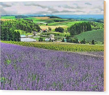 Wood Print featuring the photograph Lavender Fields by Kathy Tarochione