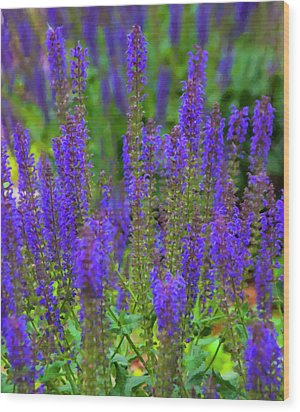 Wood Print featuring the digital art Lavender Patch by Chris Flees