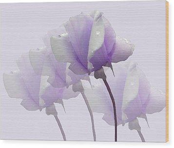 Lavender Roses  Wood Print
