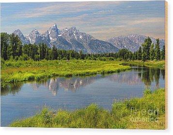Lavender Teton Peaks  Wood Print