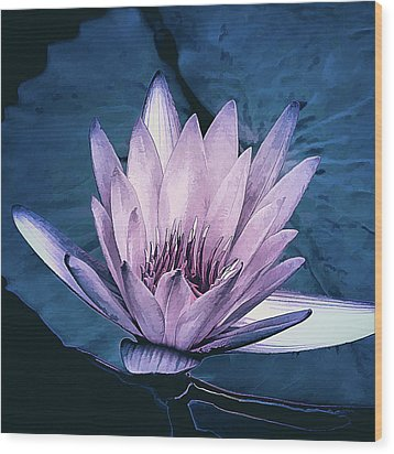 Wood Print featuring the photograph Lavender Water Lily  by Julie Palencia